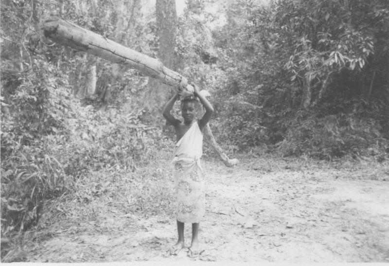 Liberia_BoyWithLog